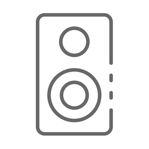 Компьютерная акустика